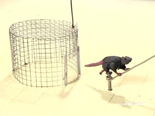 robot-chicken-afd-46-trap-7