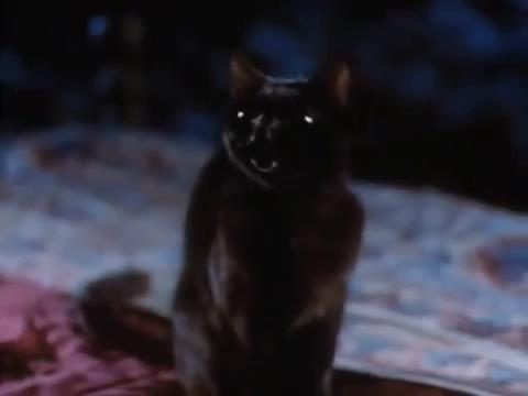 sabrina-movie-224-salem