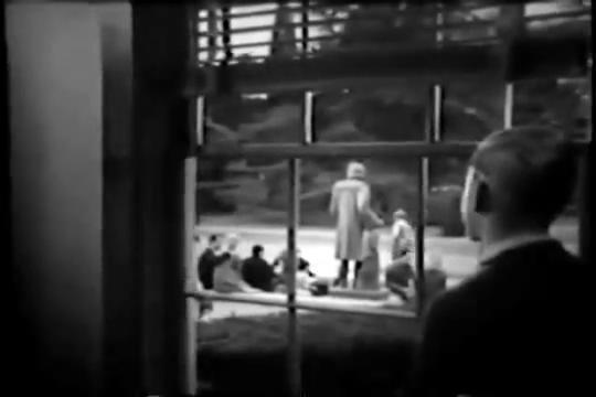 Archie-Pilot-1964-117-Archie-window